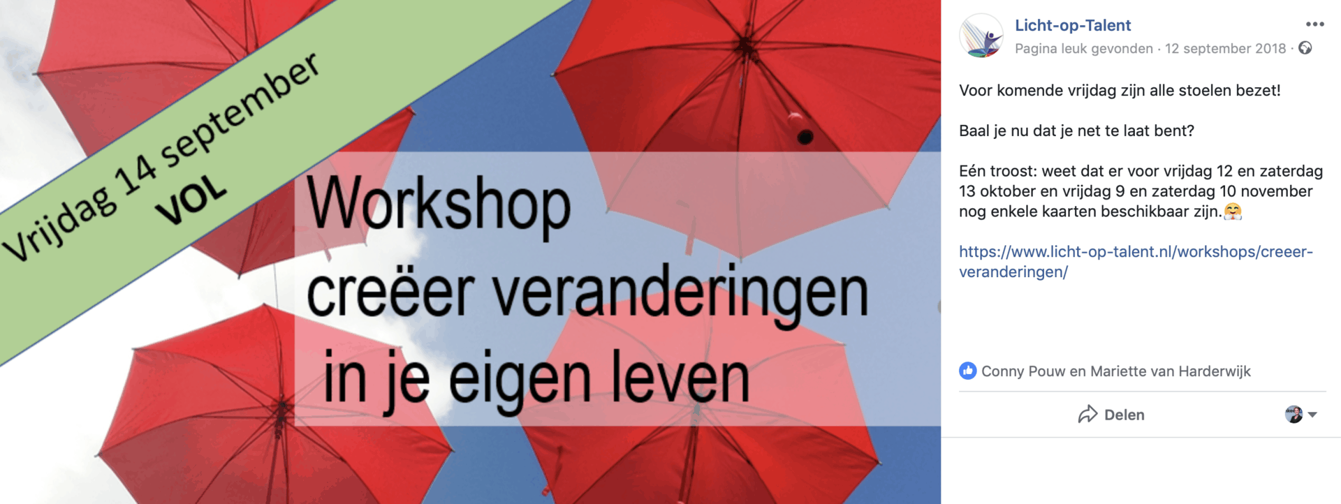 Workshop Vol - hoe zet je social media in - Trudy Pannekeet