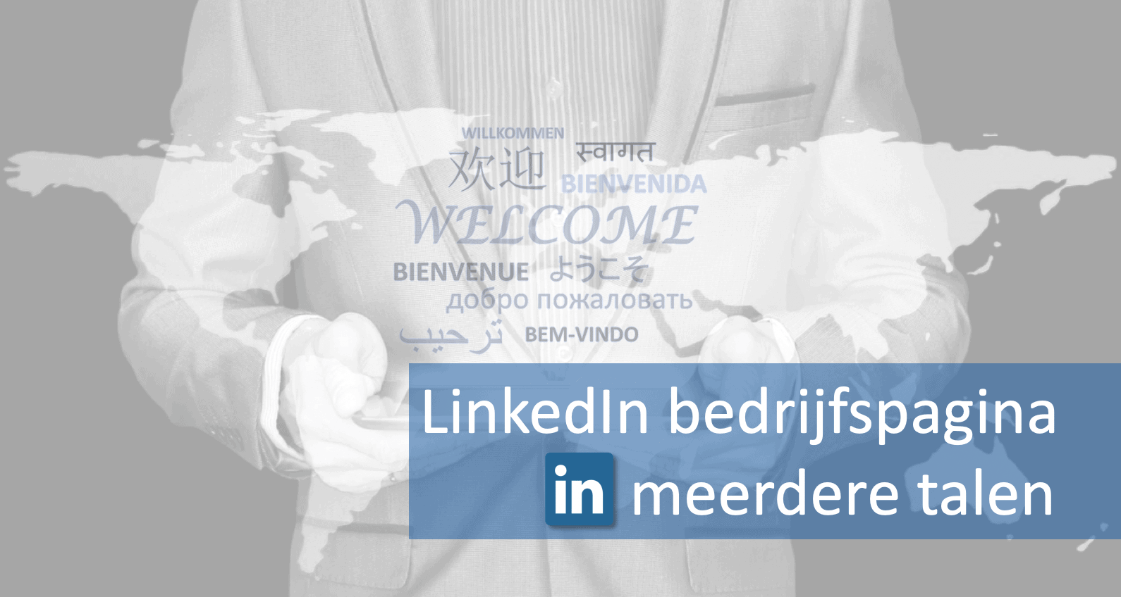 LinkedIn bedrijfspagina in meerdere talen
