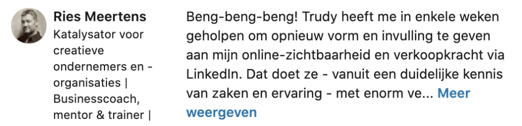 Recensie LinkedIn Trudy Pannekeet door Ries Meertens 2020
